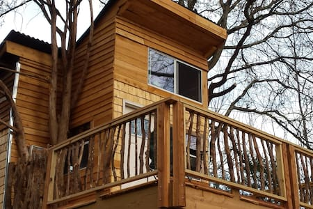 Ra's REAL TREEHOUSE n 2 huge Trees  2 beds private - Treehouse