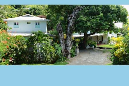 Villa de type F6 au Carbet - House
