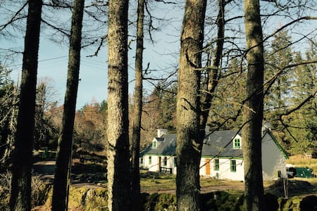 Eagle Cottage, Arisaig, West coast of Scotland - Wikt i opierunek