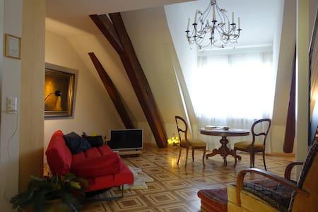 Elegant pied-a-terre in historic Olten - Olten