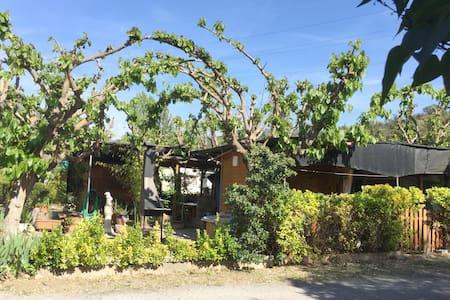 Camping Montsec - Apartamento 1 - (4 Adultos) - Apartment