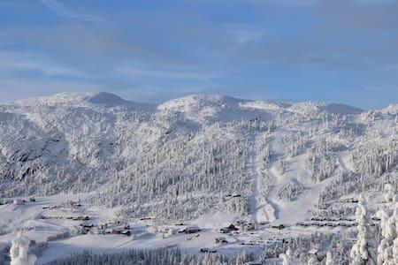 Bjørnstad i Stavedalen, Valdres - Sør-Aurdal