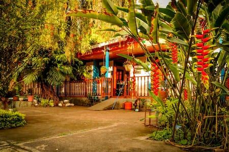 Montañero Housing (Triple accommodation) - Pereira - Bed & Breakfast