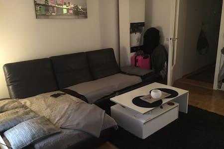 Ruhige 1,5 Zimmer Wohnung nähe Zentrum - Apartamento