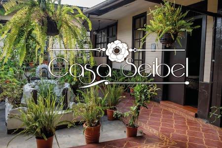 Casa Seibel - Other