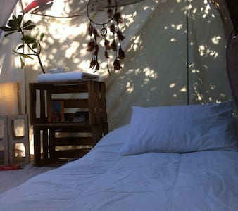 Mukta atma camping Isla Mujeres. - Stan