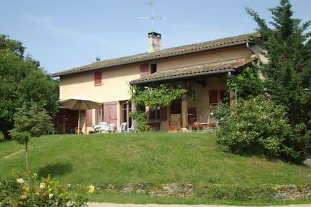 Belle maison au coeur des vignes - Anse