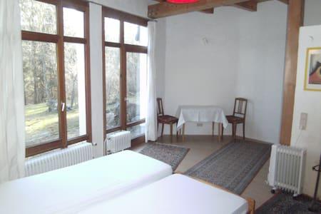 Einliegerwohnung - Sankt Blasien - Apartamento