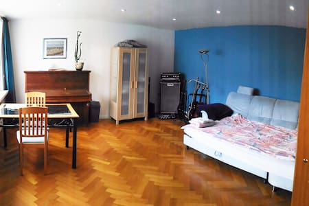 Quiet, bright room close to the Rhine - Kehl - House