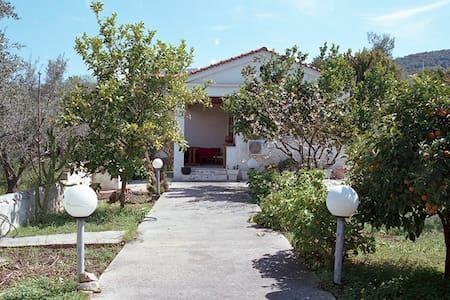 Shiny Cottage in Aegina - Vathi