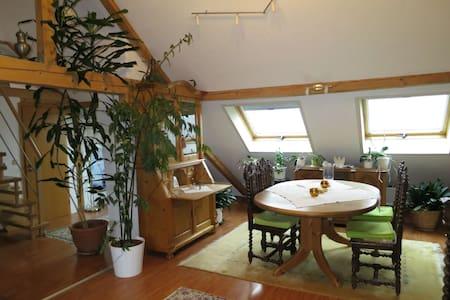 Ferienwohnung Roswitha in Blieskastel-Biesingen - Blieskastel - Lejlighed