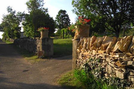 Le dolmen de Falgayras, nature - House