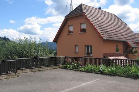 CHARMANT F2 dans la vallée de MUNSTER - Soultzeren