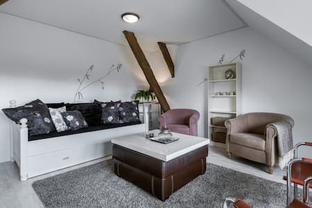 apartment near Schagen - Barsingerhorn