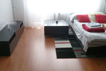 3r flat near Bratislava with IT guy - Appartement