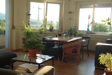 Central Room in calm shared flat with balcony - Zürich - Apartment