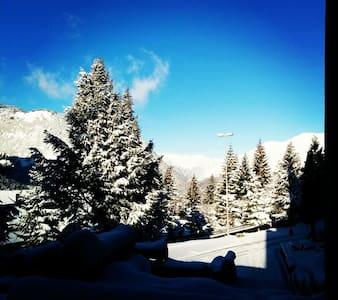 Ski down to your apartment!! 1500 - Apartament