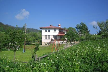 Villa Tishina - Gela - Villa