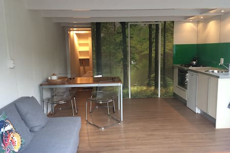 Appartement 'Groeten in Grolloo' - Grolloo - Apartament