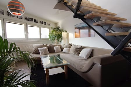 Extraordinary apartment with huge terrace - Vienne - Appartement