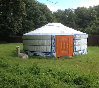 Yourte authentique - Yurt