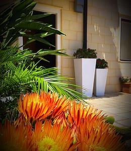 Panoramico appartamento in paese - San Nicandro Garganivo - Apartment