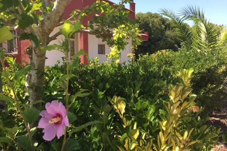 Casetta con ampio giardino nel cuore del Salento - Torre Santa Susanna
