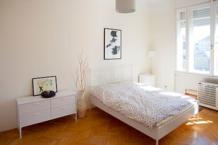 Spacious bright apt in downtown - Appartement