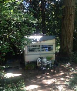 Farm retreat in vintage trailer - Lakókocsi/lakóautó