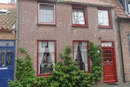 Groot, comfortabel vakantiehuis - Nieuwvliet - Hus