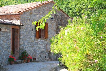 Appartamento nelle Colline Toscana - Montieri