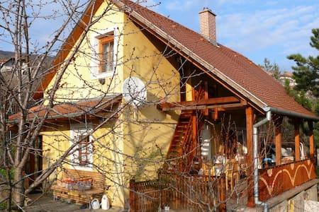 3 fős lakás,saját konyha,fürdőszoba - Pécs