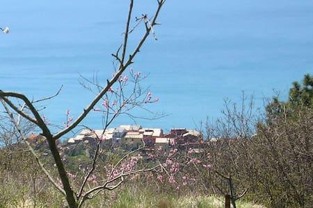 Via V. Vinzoni 27 - Flat