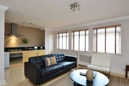 Lux Flat in prestigious Chelsea SW! - London - Apartment