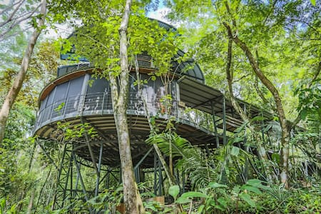 Commune with the Jungle - Puntarenas