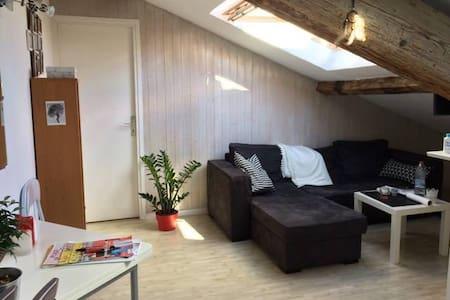 Joli appartement Presqu'île - Wohnung