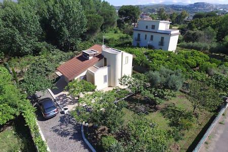 Montecristo Un giardino nel Mediterraneo - Minturno - Villa