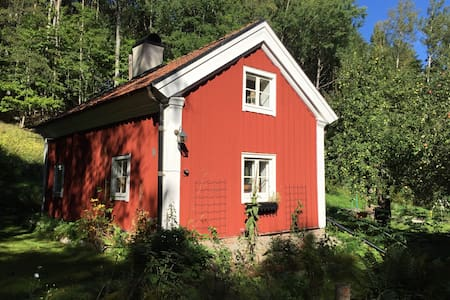 1825 cottage with modern facilaties - Hus