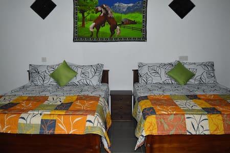 Apartment031 - Haus