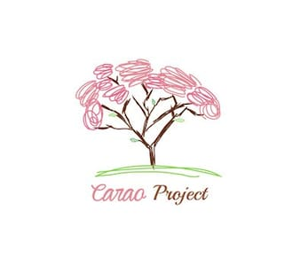 Carao Project