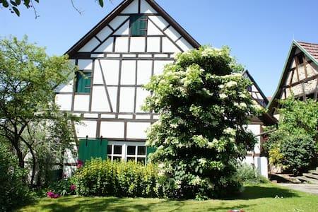 WOHLFÜHL-FERIENWOHNUNG MIT GARTEN - Kirchberg an der Murr - Loft