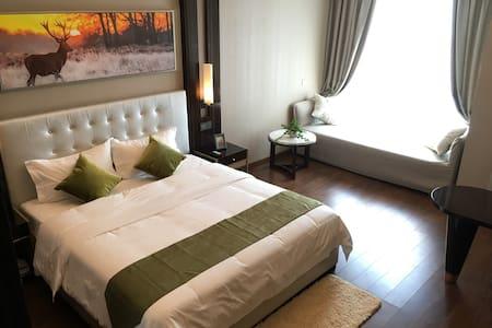 1华远国际公寓 豪华江景房 看烟花最佳位置 开窗见湘江,岳麓山,橘子洲 - Apartamento