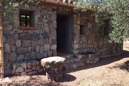 Vegetarian olive farm Casita next to an old path. - House