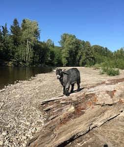 NISQUALLY RIVER RETREAT - Yelm - Muu