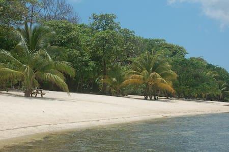 SeaDancer Beachfront Villas 2 bedrm - Sandy Bay - Hus