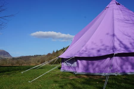 Furnished bell tent on campsite - Tent