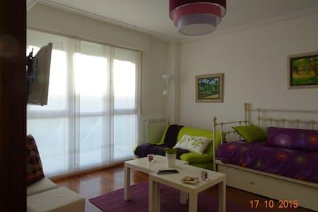 "Apartamento ""loft"" en Laguardia. Nº R. T. EVI0024 - Vindsvåning"