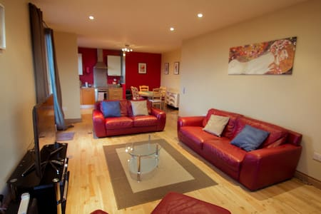 Lovely room with terrace in Dublin - Dublin - Condominium