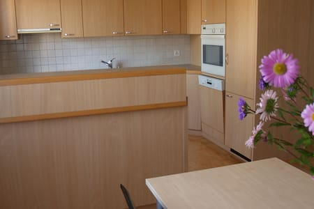 Friendly and quiet apartment for rent in Berg. - Apartment
