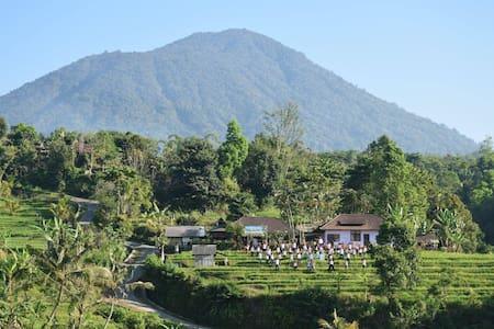 Great Home Stay in Jatiluwih, Bali - Bed & Breakfast
